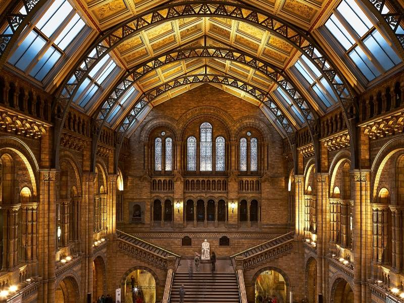 A picture of the stairs in the entrance hall of the Natural History Museum in London where you can take one of the best virtual tours of London