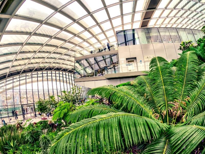 A view of the inside of the Sky Garden in London a great budget London option for visitors as it is free