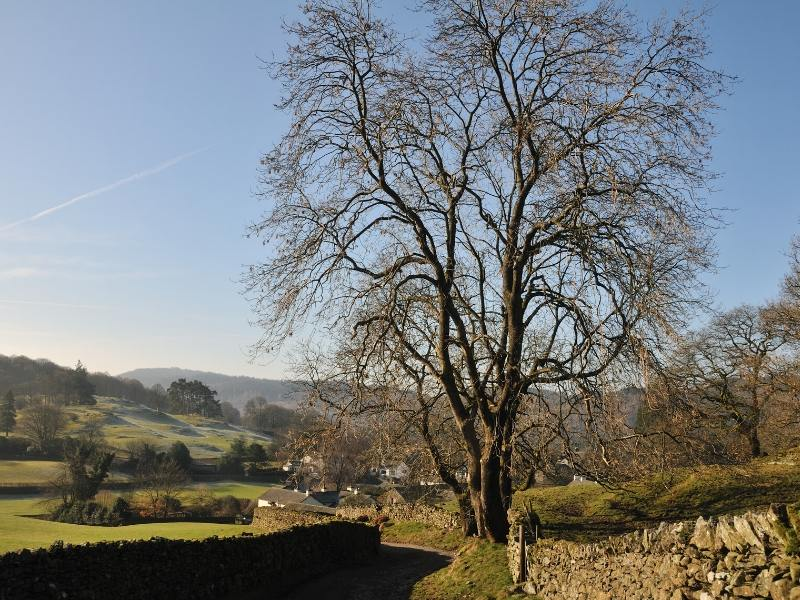 Near Sawrey in the Lake District