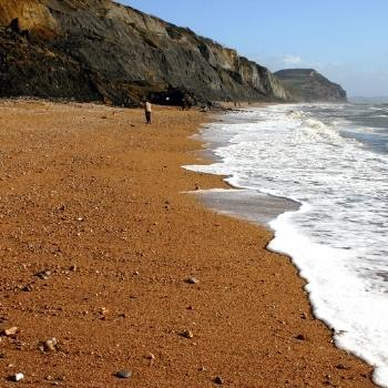 Charmouth Beach in Dorset Jurassic Coast
