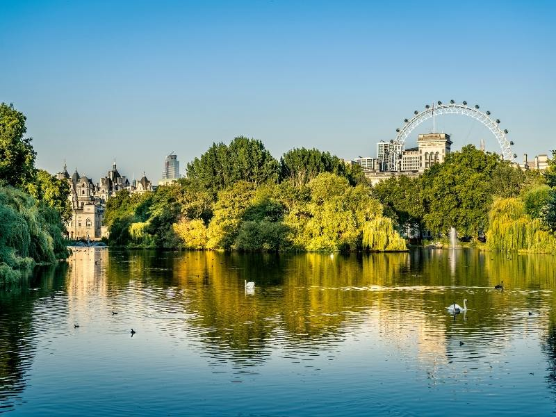 A view of the London Eye from St James's Park in London which can be seen from some hotels in Westminster.