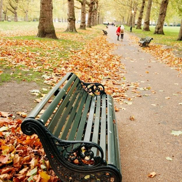 Bench in a London park.